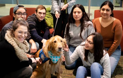 Chloe, the therapy dog, makes an appearance for this semester's Stress-Free Zone