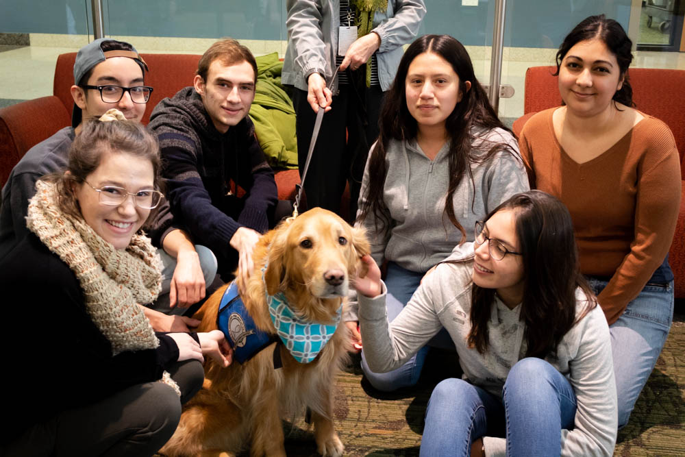 The Observer staff releases some stress before finals week with Chloe, the therapy dog, in the Jobe Lounge.