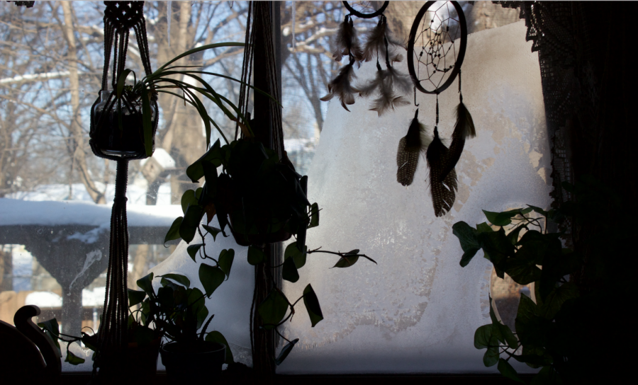 A bedroom window freezing up due to the Polar Vortex
