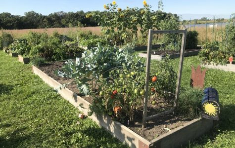 The people behind the Spartan Food Pantry garden