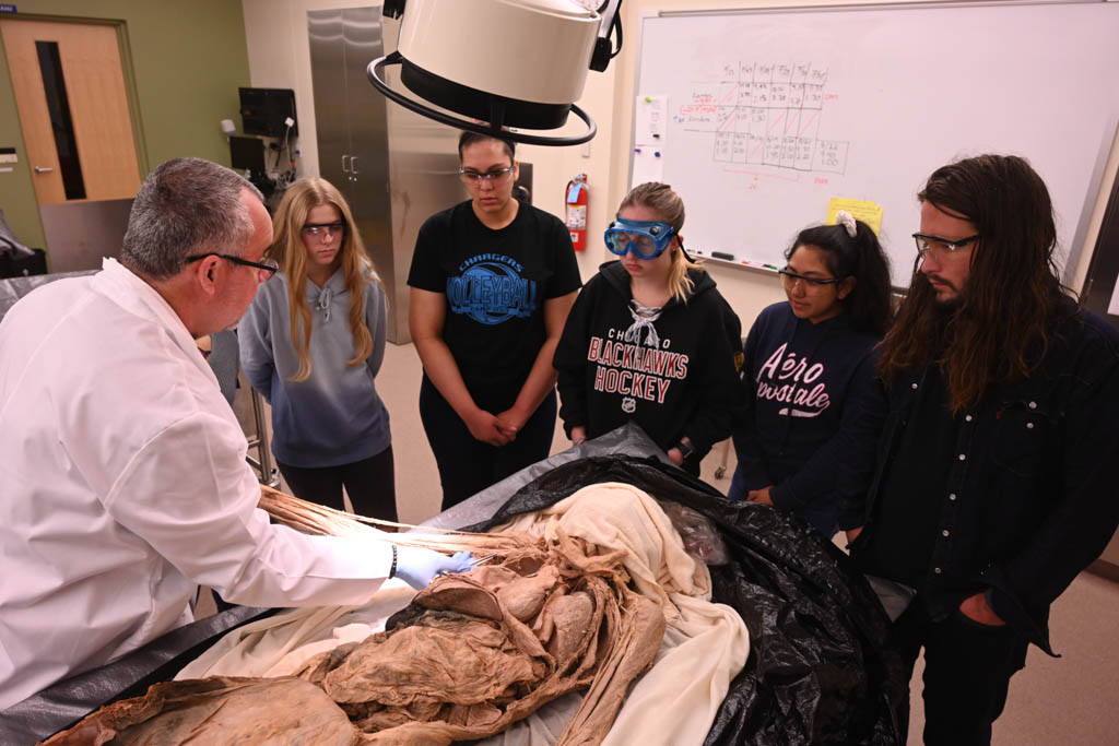 Dr. Luis Martinez discusses an anatomical point with Anatomy and Physiology 2 students.