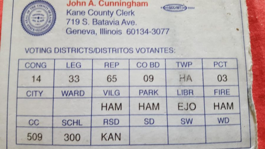 A voter I.D. from an active voter.
